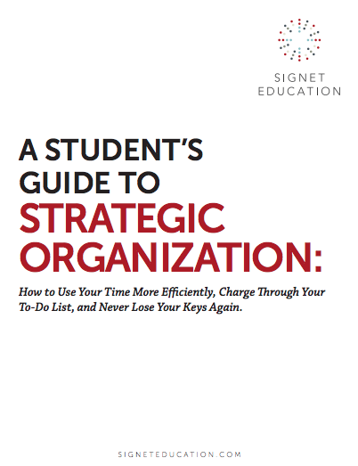 A Student's Guide to Strategic Organization